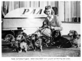 A group of dachshunds enjoy new Pan Am service from Germany to London